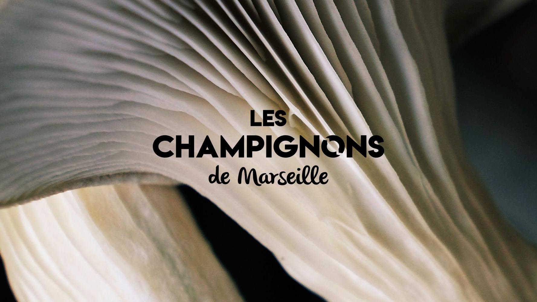 Une année d'expérimentation avec Les Champignons de Marseille